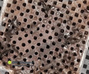 Was kostet Partikelfilter regenerieren?